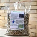 Giá hạt chùm ngây ở Hà Nội