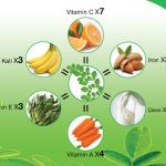 Công dụng và giá trị dinh dưỡng của bột chùm ngây